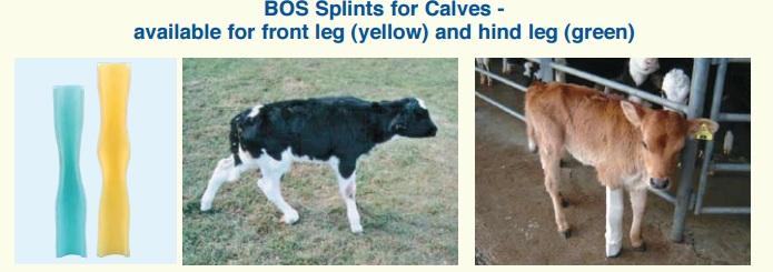 BOS Splints для телят