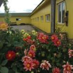 Ухоженный двор в хозяйстве