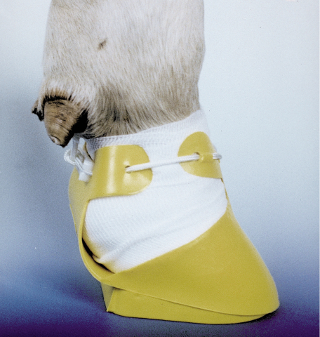 Башмак на копыто(желтый) Shoof