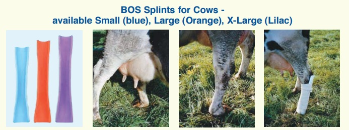 BOS Splints для коров