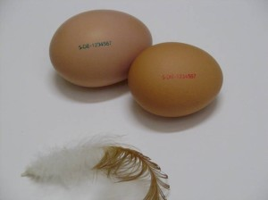 Краска для маркировки яиц