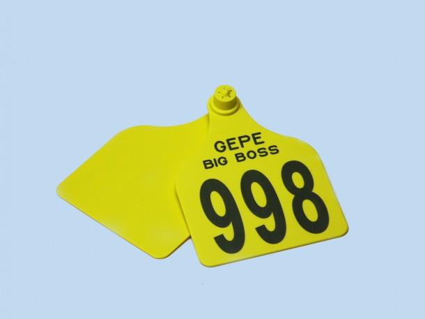 dsc00527-610×457